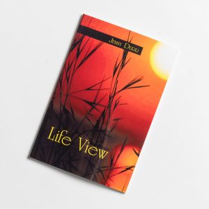 Life View by Jenny Durr